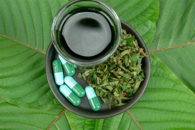 Green Malay Kratom: Origin & Characteristics - scholarlyoa.com